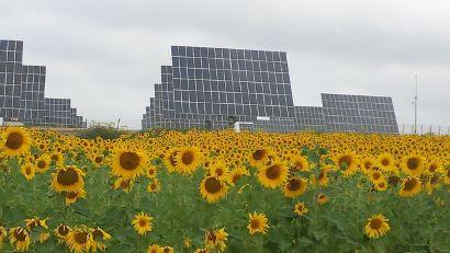 Ley andaluza del cambio climático y transición energética