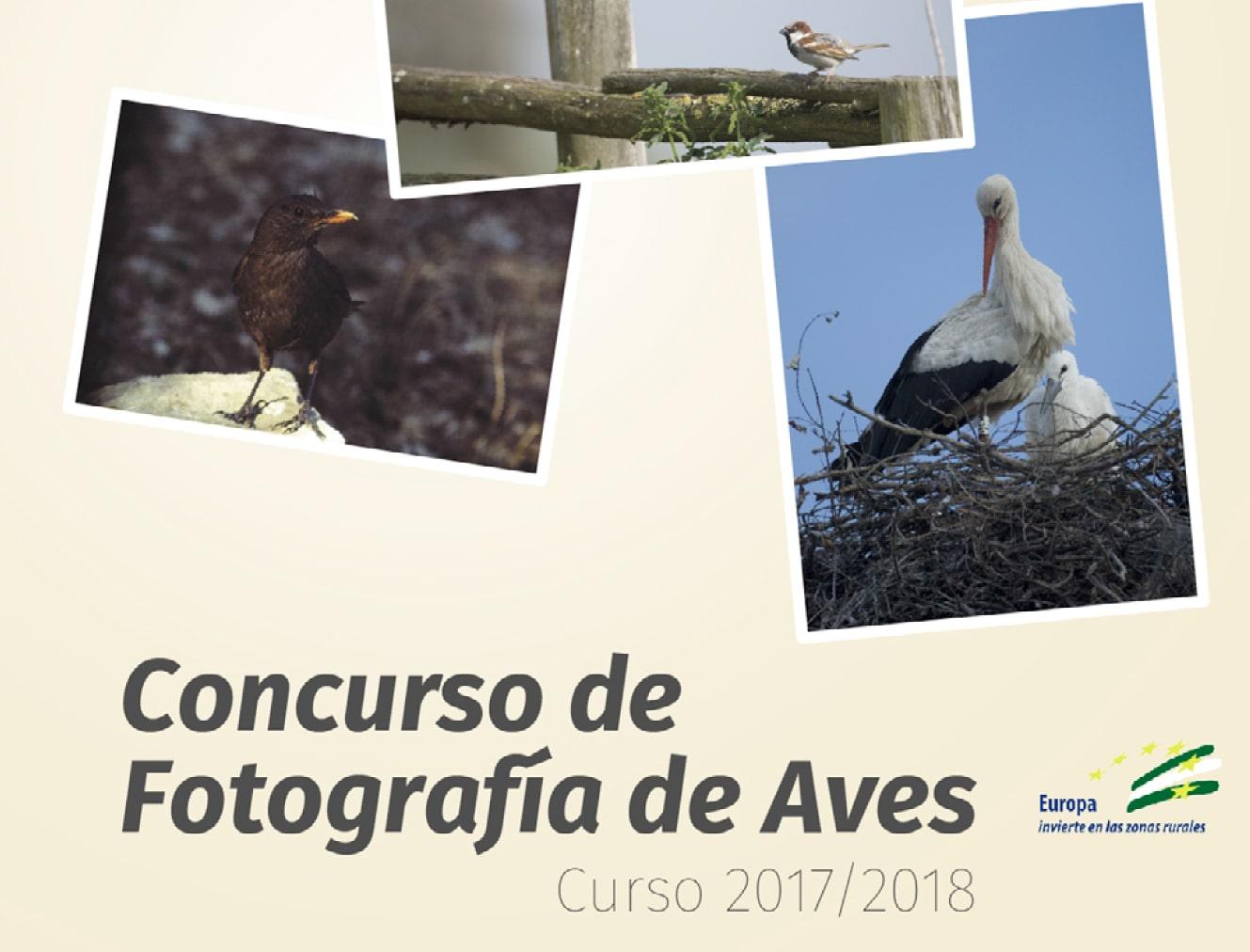 Concurso de Fotografía de Aves