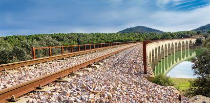 Camino de hierro. Puente sobre pantano