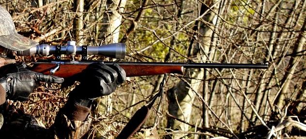 ¿Cómo se adjudican los de permisos de caza en terrenos cinegéticos de titularidad pública?