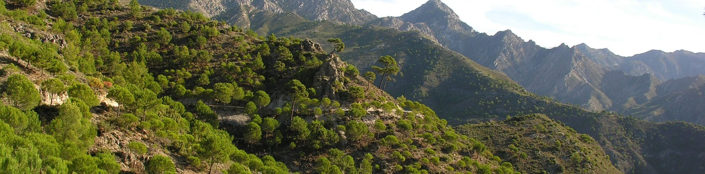 Cabecera Blog Marca Parque Natural