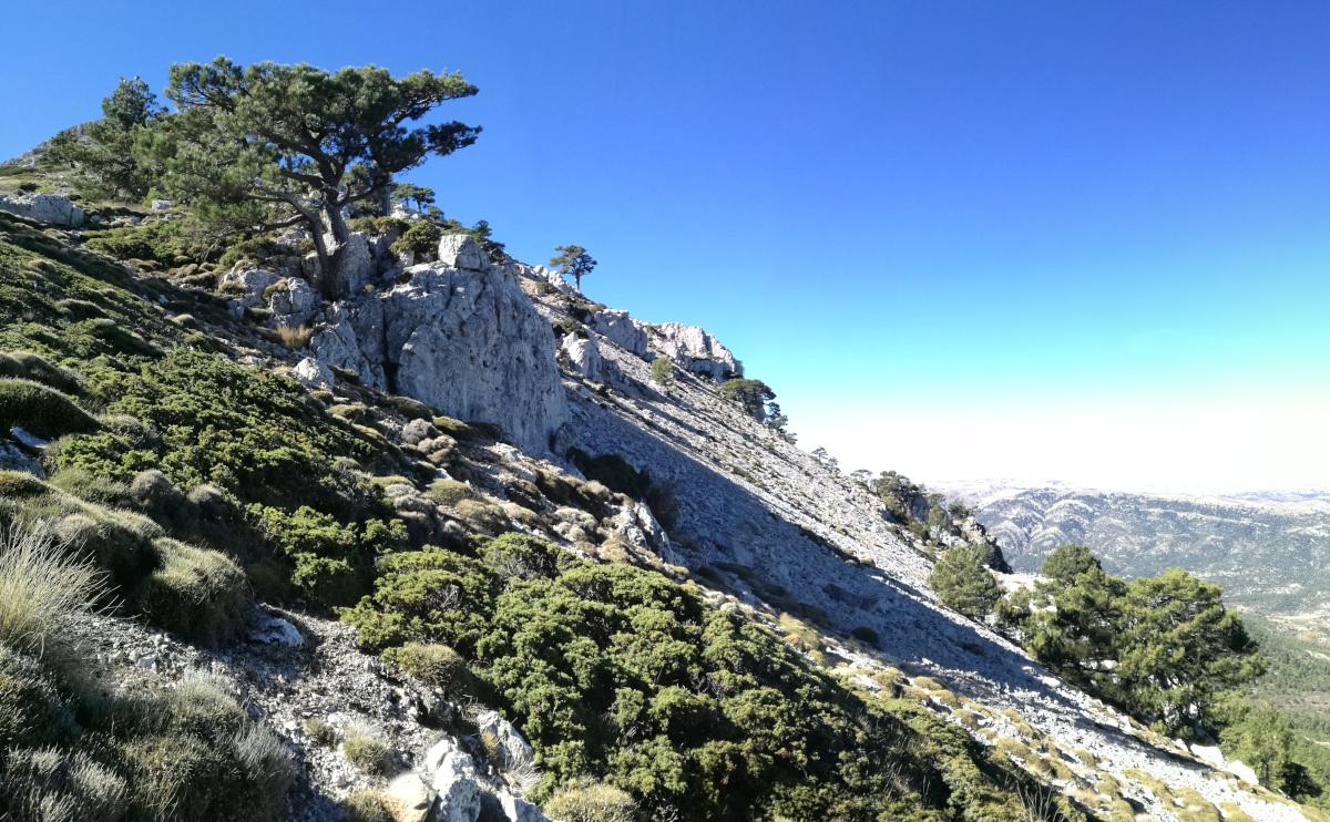 Paisaje de Sierra de la Sagra