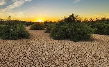 Indicadores de seguimiento de la sequía
