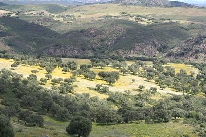Sistema de Información sobre el Patrimonio Natural de Andalucía