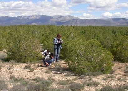 Coordinación con otros programas de conservación