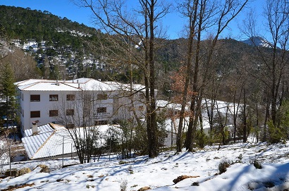 Programa de formación del Centro de Capacitación y Experimentación Forestal de Cazorla
