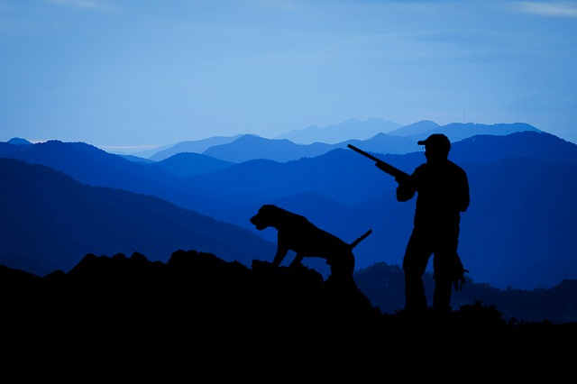 Tipos de licencias de caza y pesca continental