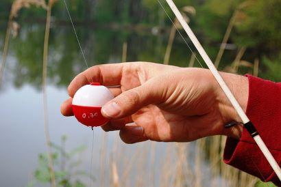 Vedas y periodos hábiles de pesca continental en Andalucía (2021)