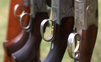 Normativa sobre la caza en Andalucía