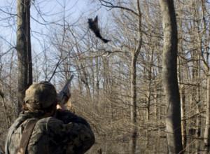 Modalidades de caza menor en Andalucía