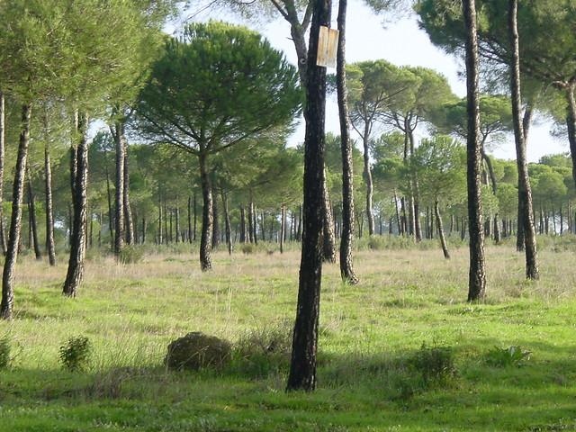 Áreas protegidas de la RENPA