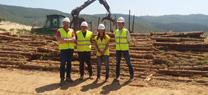 La Junta genera unos 4.800 jornales directos en el campo gracias a los aprovechamientos de madera en los montes públicos de Córdoba