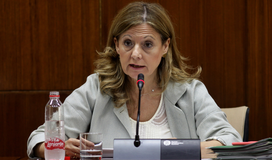 Marina Álvarez, consejera de Salud de la Junta, durante su comparecencia en comisión parlamentaria.