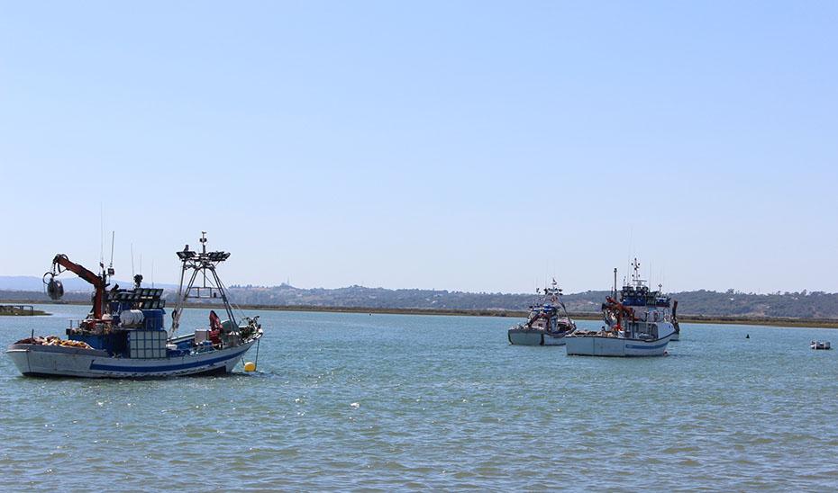 Hallado el cuerpo sin vida de una persona frente a la costa de Garrucha