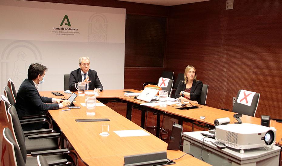 Rogelio Velasco, durante la reunión telemática mantenida este viernes con el sector.