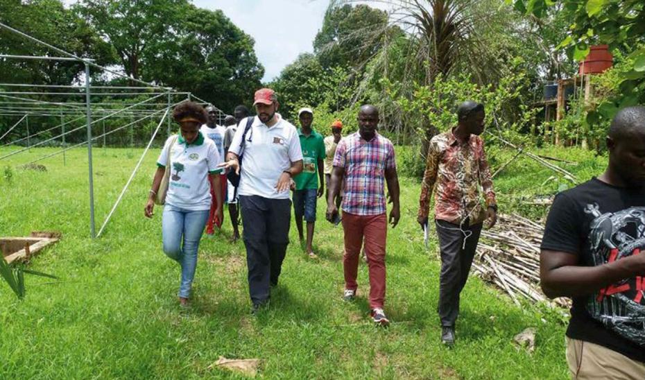 Proyecto de la cooperación andaluza en Guinea Bissau. (Foto: ONGD Bosque y Comunidad)