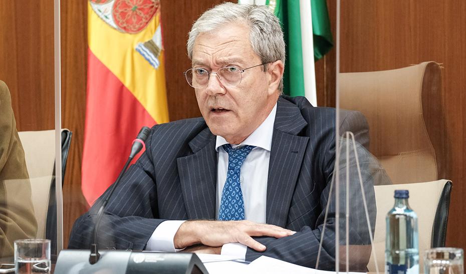 El consejero de Transformación Económica, Rogelio Velasco, durante al comisión parlamentaria.