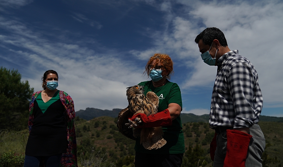 Moreno ha celebrado el Día Mundial de las Aves Migratorias en la Sierra de las Nieves, en Málaga.