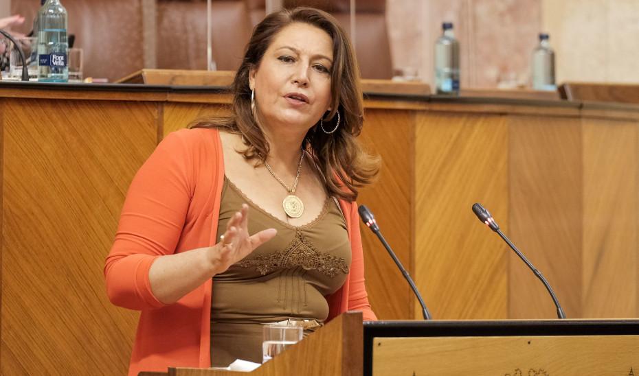 La consejera Carmen Crespo interviene en el Parlamento de Andalucía.