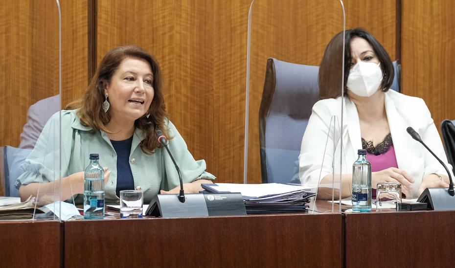 La consejera de Agricultura, Ganadería, Pesca y Desarrollo Sostenible, Carmen Crespo, durante su comparecencia en Comisión parlamentaria.
