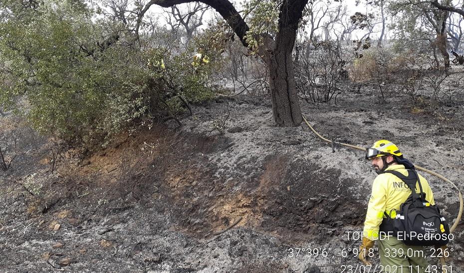 Restablecido el tráfico en la carretera N-630 tras  permanecer cortada por el incendio forestal de Guillena