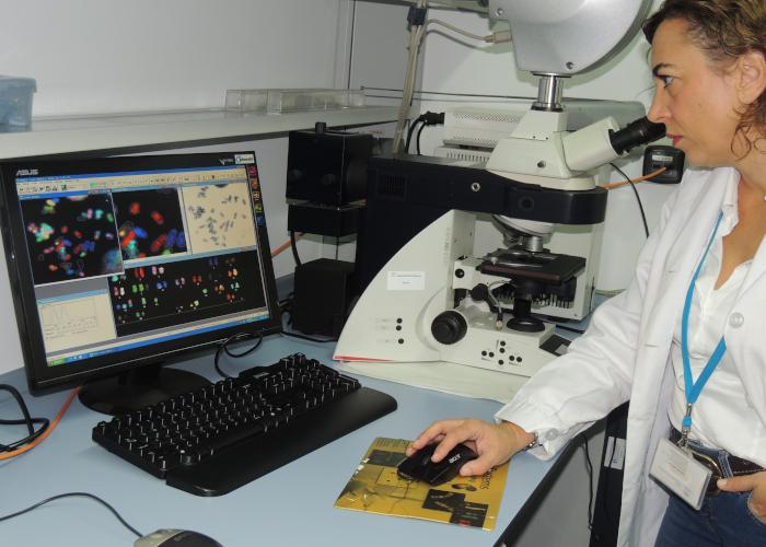 Técnico de Citogenética