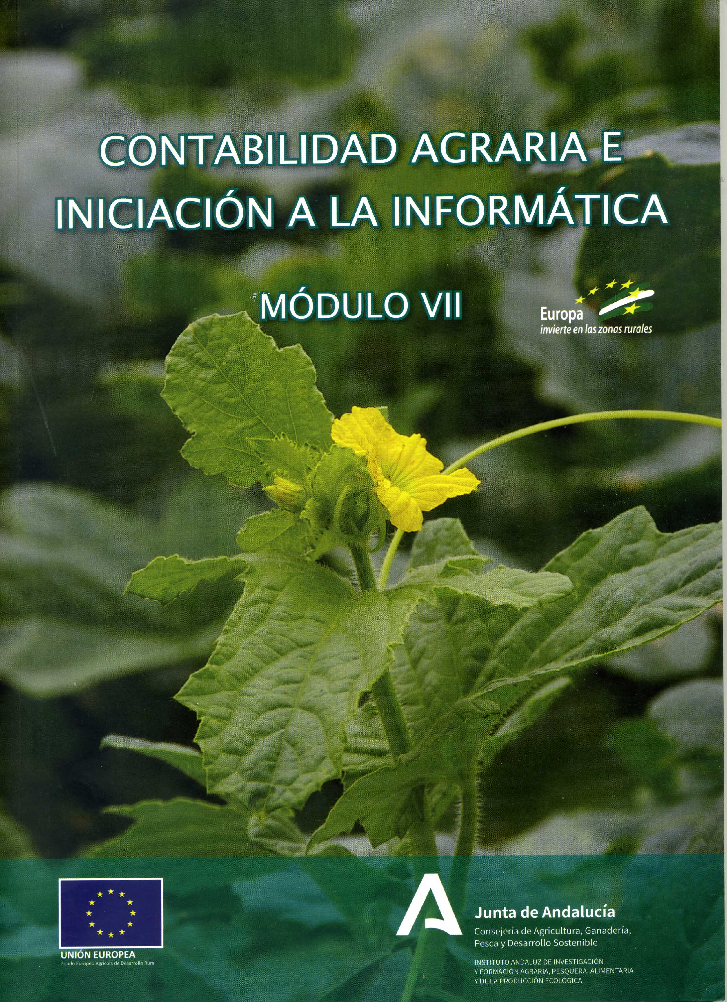 CONTABILIDAD AGRARIA E INICIACION A LA INFORMÁTICA. MÓDULO VII