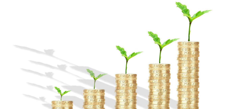Inversión y Gestión de Capital Semilla de Andalucía SICC S.A.